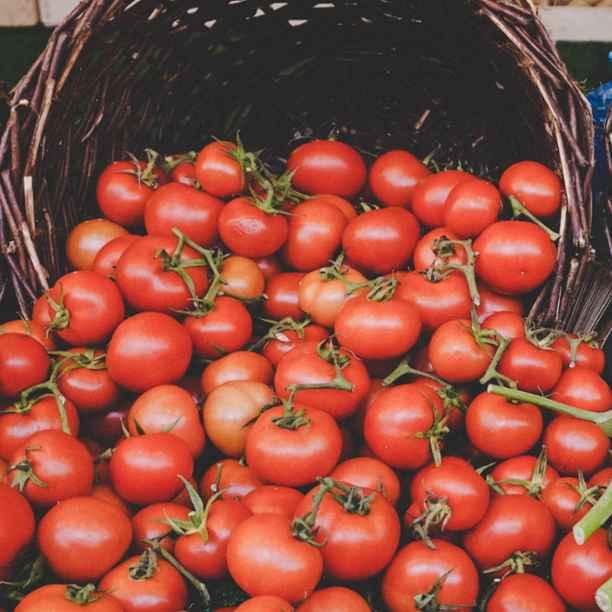 Tercera edición del matchfunding ¡Alimenta la próxima cosecha! para apoyar la agricultura de cercan