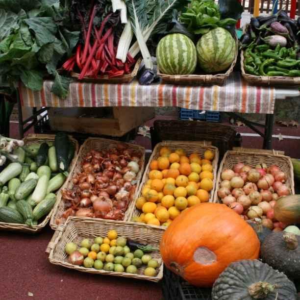 Logra tu meta con nuestro matchfunding para proyectos agroecológicos y de proximidad