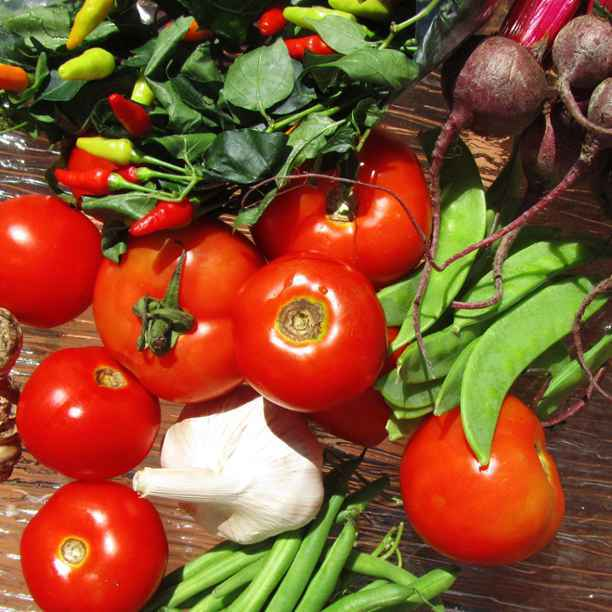 Madrid KmRegión y la Fundación Triodos impulsan la agricultura familiar