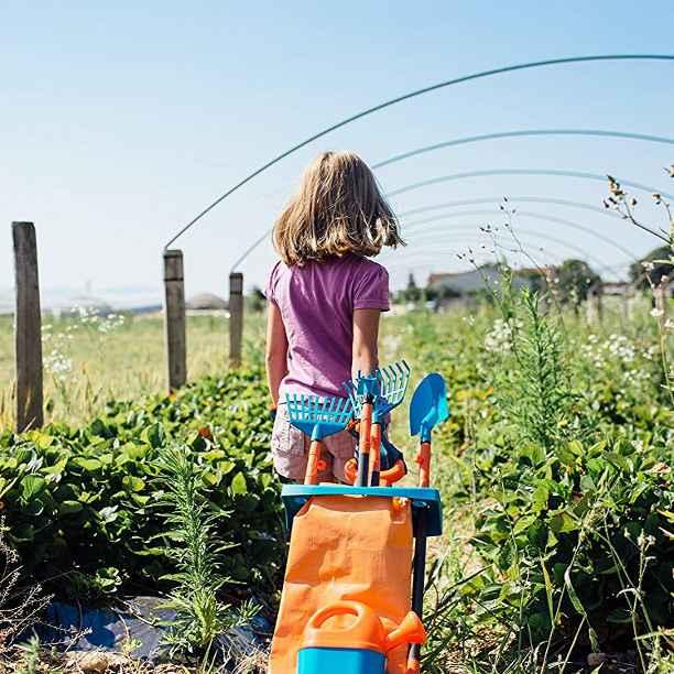 La 6ª edición del Premio Nacional Huertos Educativos Ecológicos cierra su plazo de inscripción
