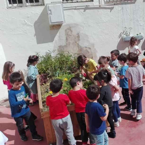Trabajando la competencia científica en Infantil